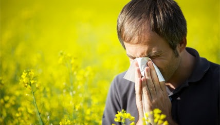 Allergy Lifestyle Management