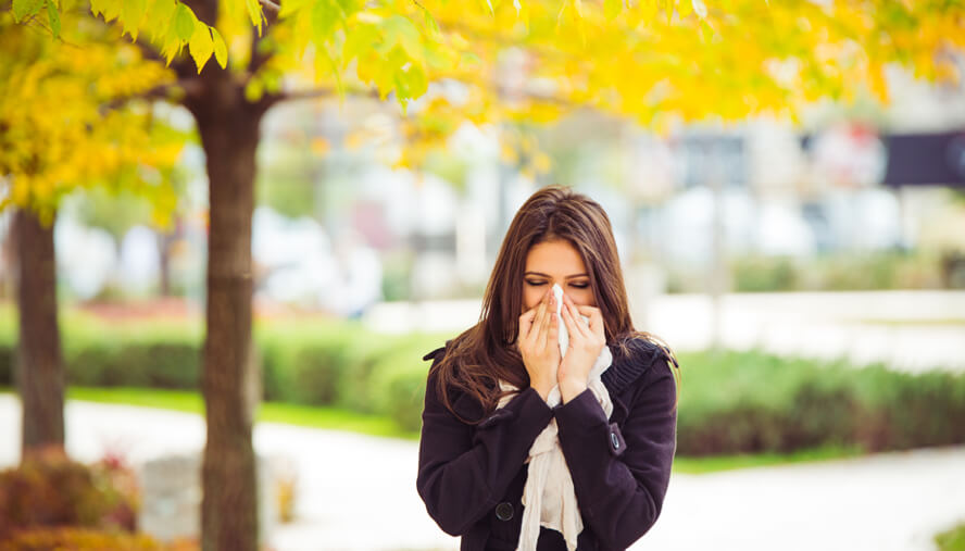 Finding Relief from Fall Allergies
