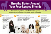 Asthma and Pets Inforgraphic