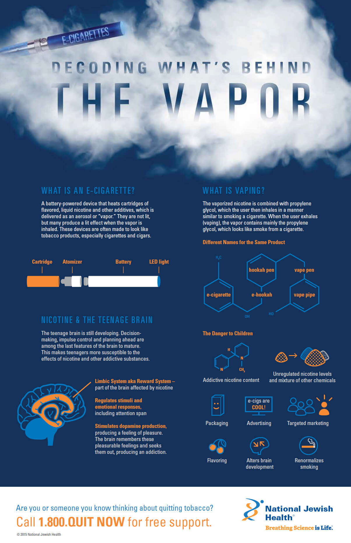 E-Cigarettes: Decoding What's Behind The Vapor Infographic