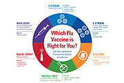 Which Flu Vaccine Is Right For You? Infographic