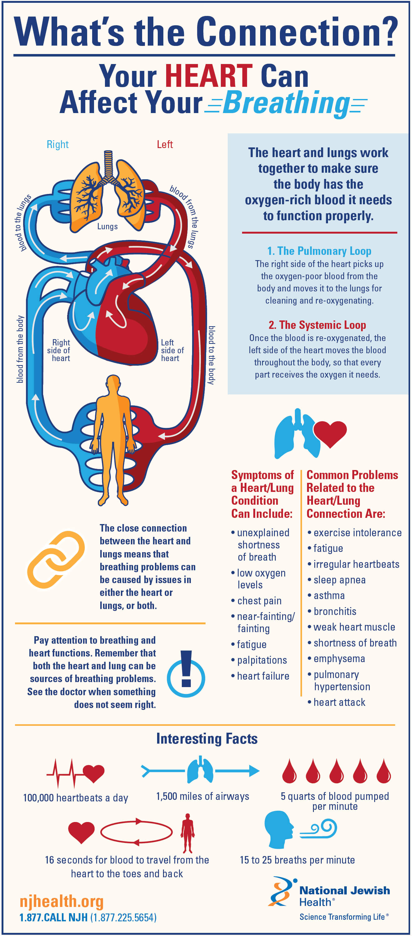 What S The Connection Your Heart Can Affect Your Breathing