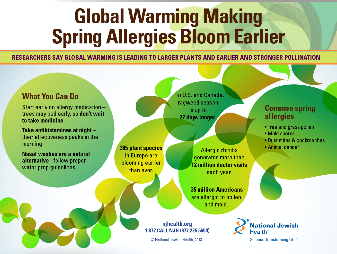 spring allergies infographic