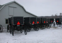 Amish Wagons