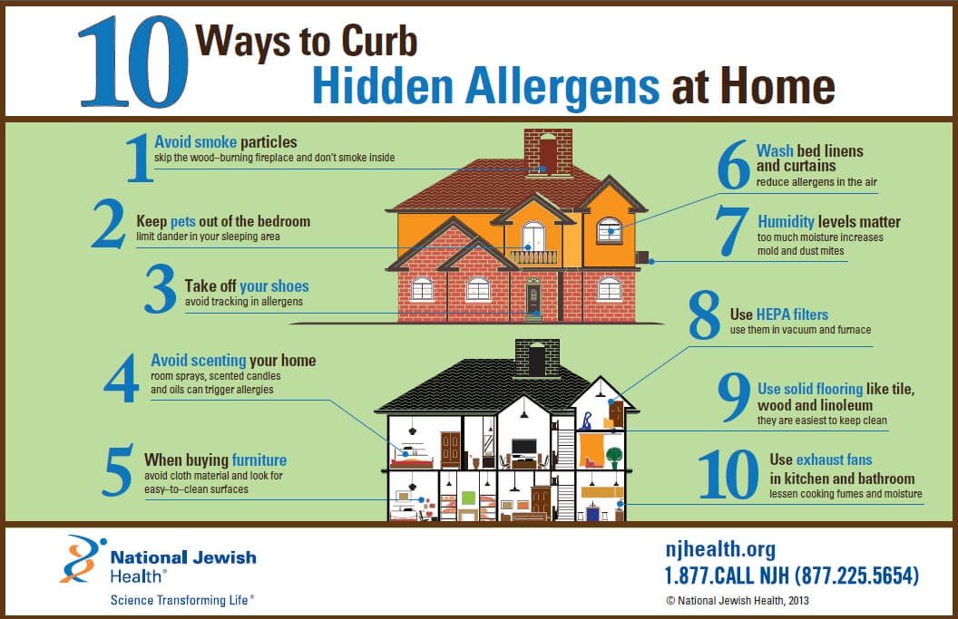 hidden allergens at home infographic