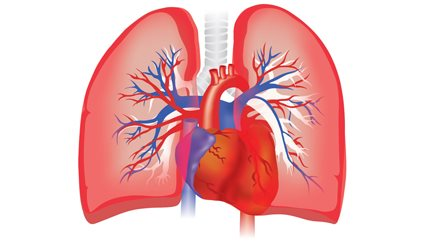 New Trial Medication for Pulmonary Arterial Hypertension