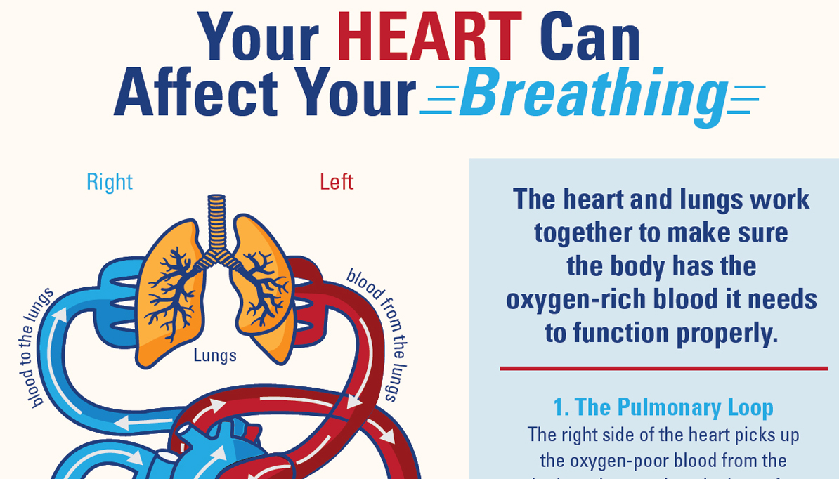What's the Connection? Your Heart Can Affect Your Breathing