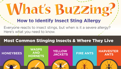 What's Buzzing? How to Identify Insect Sting Allergy