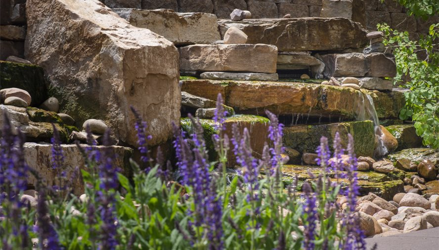 Our healing gardens have tranquil gardens and a waterfall to help patients<br>relax.