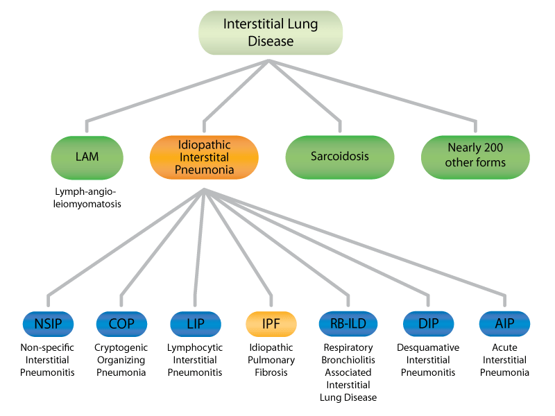 Familial pulmonary fibrosis forms of pulmonary fibrosis iip forms ccuart Choice Image