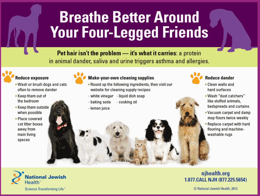 Pets and Asthma Infographic- Breathe Better Around Your Four-Legged Friends